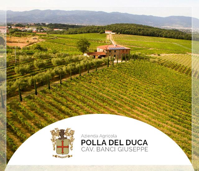 Azienda Agricola Polla del Duca